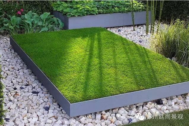 草坪的不同表现形式